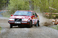 South Swedish Rally